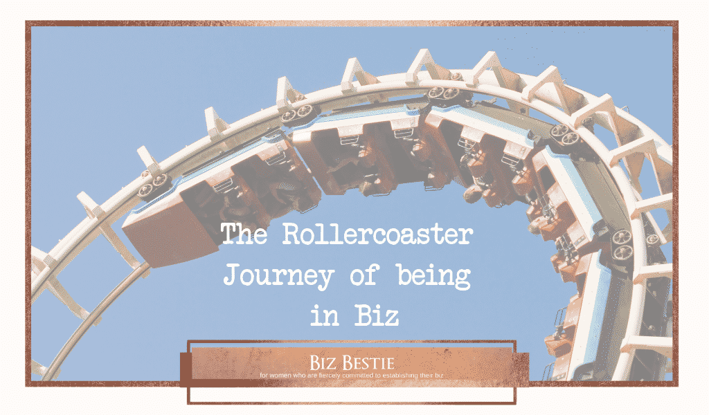 The Rollercoaster – Journey of being in Biz